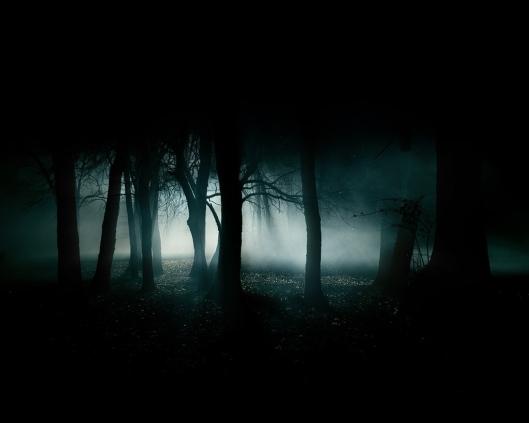 bosque_oscuro