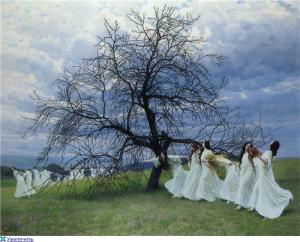 El martillo de brujas: Mujeres sabias... brujas, universo femenino de sombras.
