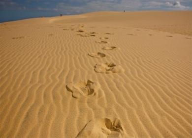 duna y huellas